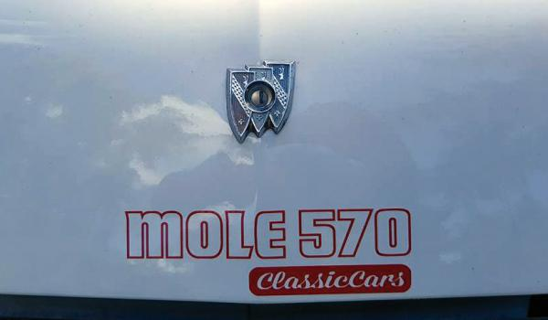 Sticker Mole 570 - small